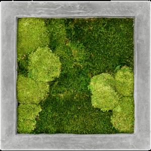 Schilderij vierkant