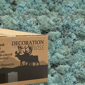 Caribbeanblue mos rendiermos 3 kilo voor grote wanden