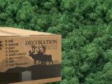 002 MosBiz Rendiermos Grass green 3 kilo decoraties, schilderijen en mos wanden