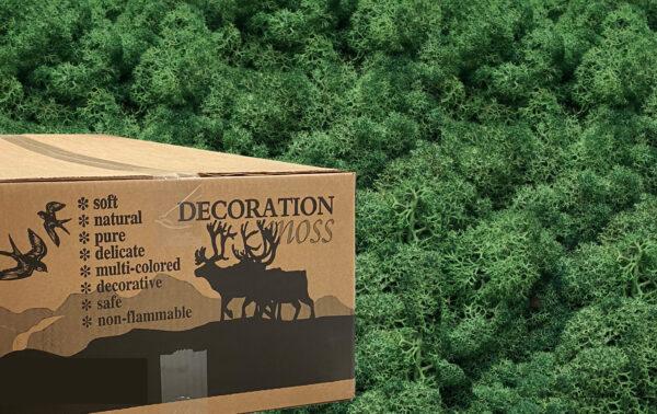 Grass Green mos rendiermos 3 kilo voor grote wanden