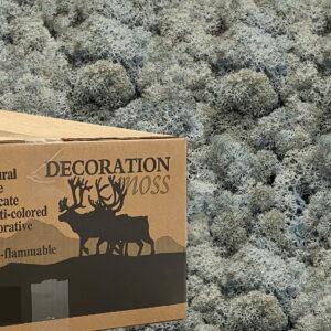 Ice Blue mos rendiermos 3 kilo voor grote wanden