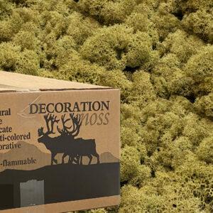 Kiwi mos rendiermos 3 kilo voor grote wanden