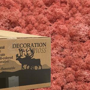 Roze mos rendiermos 3 kilo voor grote wanden