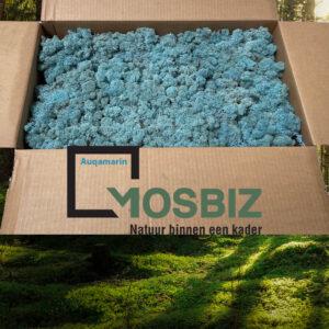 Auqamarin mos rendiermos 2 laag 2,6 kilo voor grote wanden