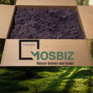 Aubergine mos rendiermos 2 laag 2,6 kilo voor grote wanden