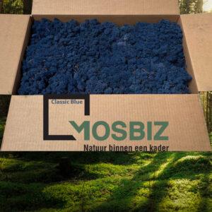 Classic Blue mos rendiermos 2 laag 2,6 kilo voor grote wanden